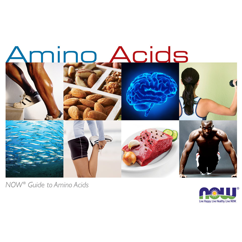 amino acid guide preview