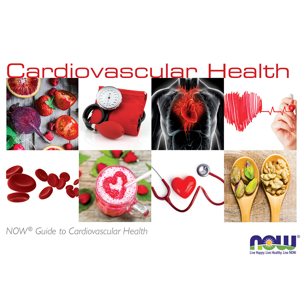 guide to cardiovascular health thumbnail