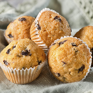 Blueberry Flax Muffins