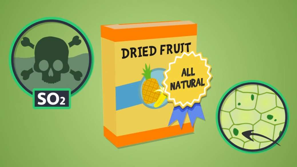 NOW's Dried Fruit Video