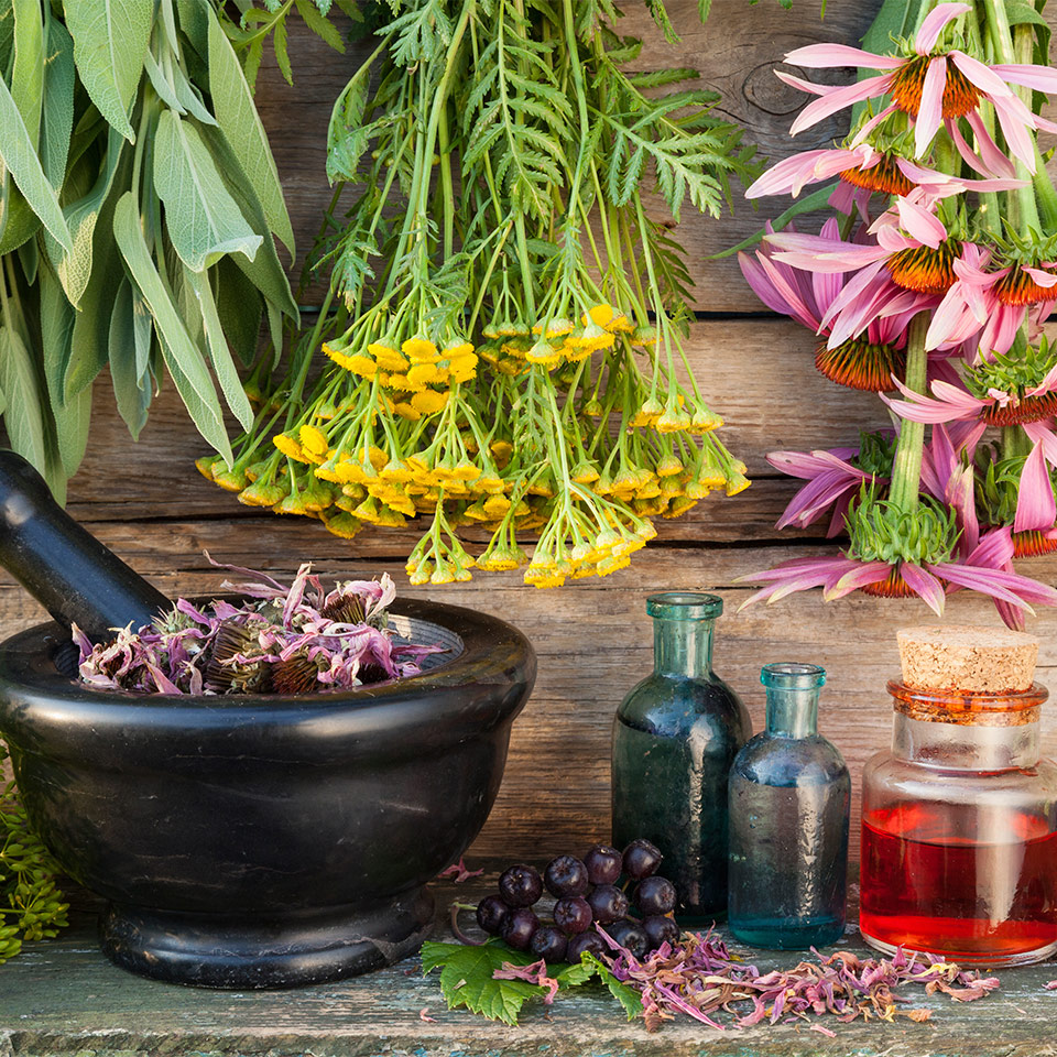 More About Aromatherapy and Essential Oils